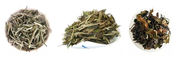 白茶,寄存多少年最好喝?插图2
