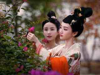 沈珍珠是李白的徒弟吗,历史上真的有沈珍珠这个人吗,是她使得唐代宗没有立后吗?
