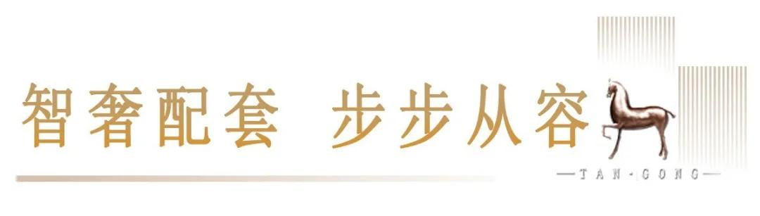 好奇!平顶山市中心最奢配高层,究竟卖啥价?8月22日揭晓插图28
