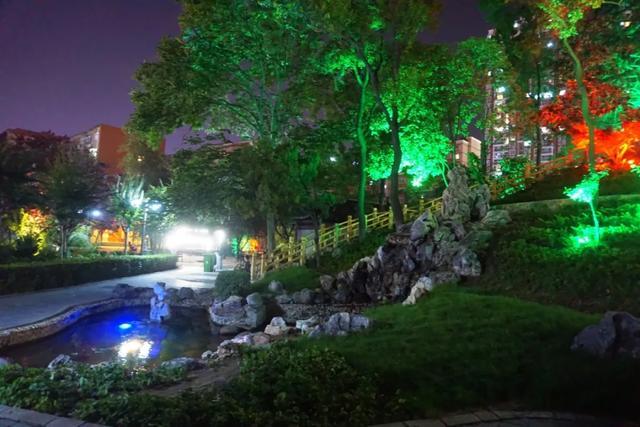 「游园夜景醉游人」晚上8点以后的工人文化宫,美爆了插图22