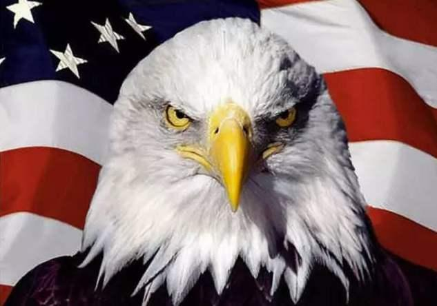 尴尬!安理会投票否决美提案,仅有一票支持美国,正义终将来临www.smxdc.net