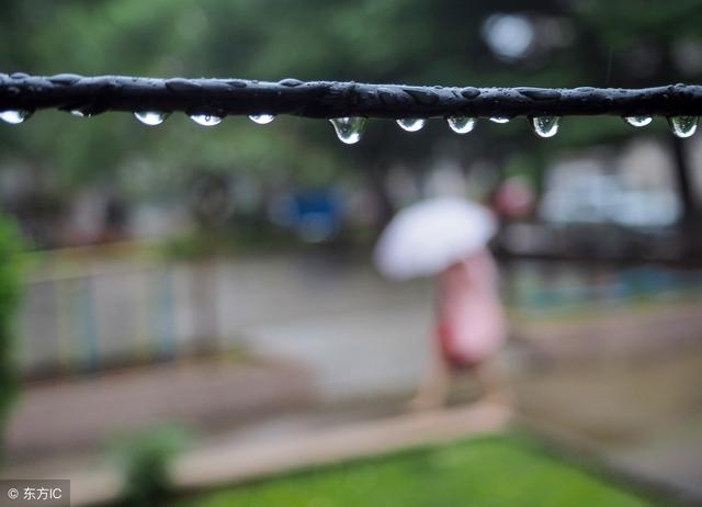 初春小雨,【赏诗】韩愈   早春呈水部张十八员外 / 初春小雨