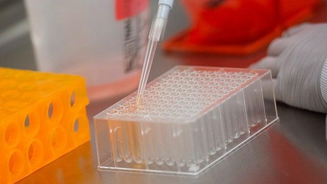 美媒:美国应与中国为新冠疫苗合作 别坐视死亡【www.smxdc.net】