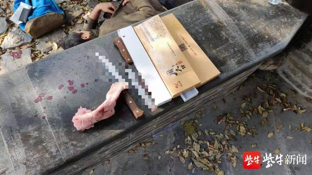 母亲离世男子悲痛难忍,竟在镇江南山剖腹自杀 全球新闻风头榜 第3张