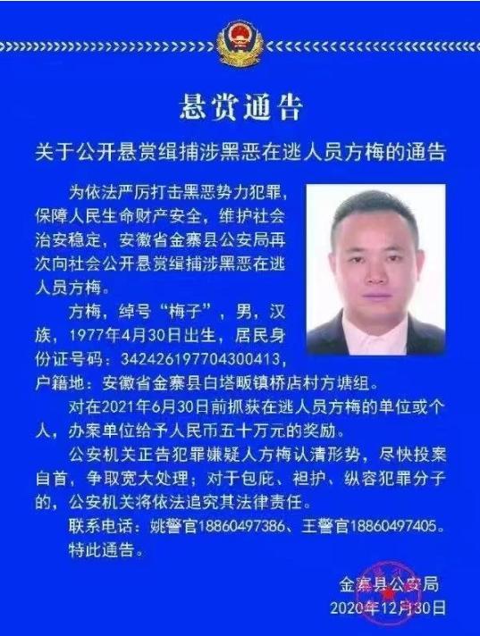 """安徽警方悬赏50万!缉捕""""梅子"""""""