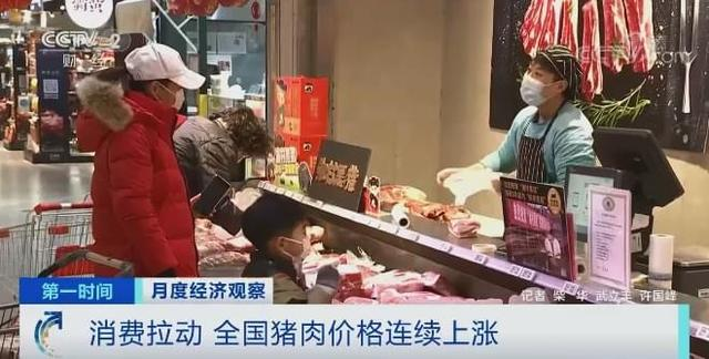 生猪肉价格持续7周增涨,总计升高20%上下