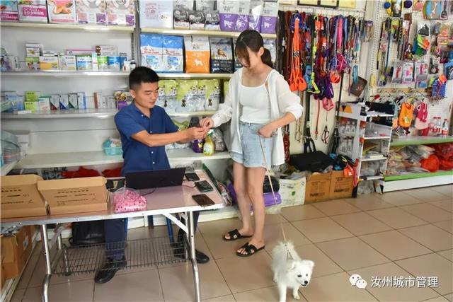 汝州市第一张犬牌发出,家有萌犬的你还在等什么插图2