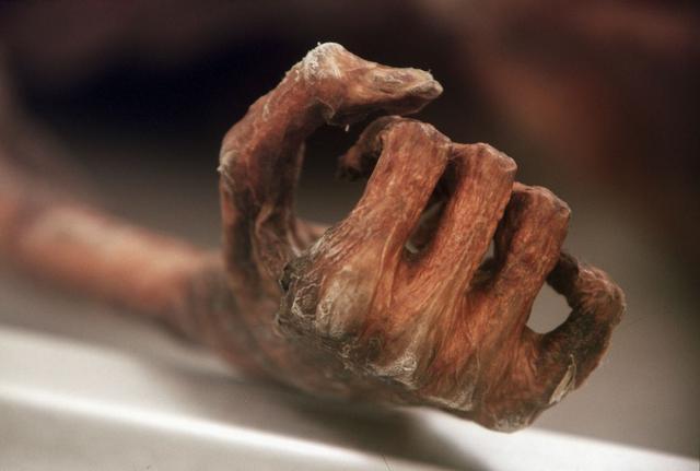奥茨冰人是湿尸,未解之谜:为你揭开5300年前冰人奥茨最后的不幸之旅