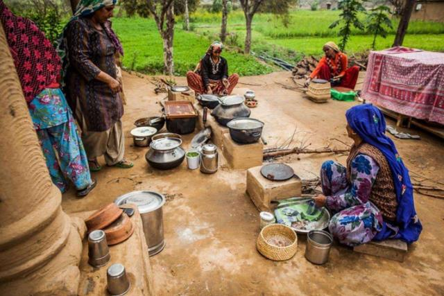 视危机为转机?印媒:按莫迪的路子走,印度将成全球食品出口大国