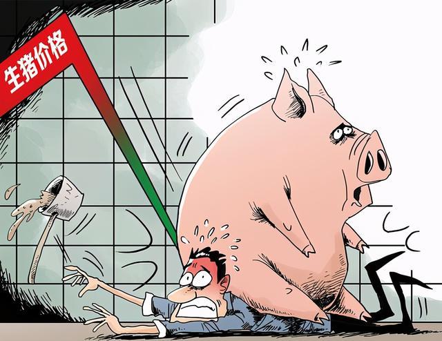 猪产业链指数暴涨7%二师兄又变香了外