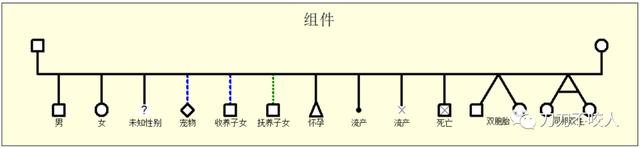 """如何使用软件绘制""""家庭结构图""""?"""