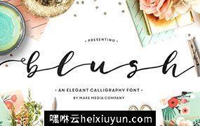 时尚手写字体 Blush Typeface #489548