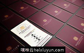 5套商业名片模版Business Card Bundle