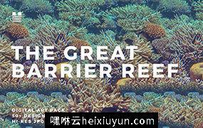 澳大利亚大堡礁珊瑚礁个性时尚纹理背景底纹大集合the-great-barrier-reef