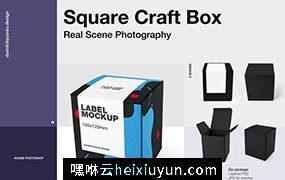 3个PSD智能对象工艺方形Square Craft Box  #337804