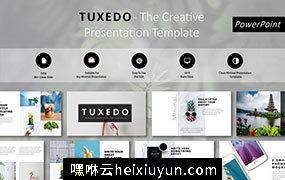 现代的易于编辑的模板Tuxedo Minimal PowerPoint Template #2392091