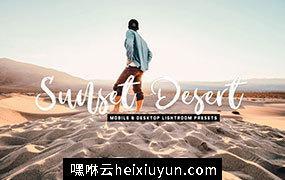 海边阳光专业人像lr滤镜Sunset Desert  #3850835