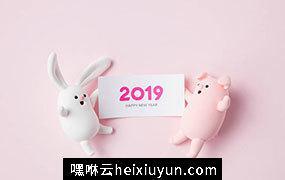 可爱超萌小兔兔和小猪猪新年报喜高清素材合辑