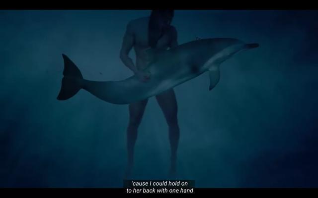 加入海豚强奸受害者协会后,我再也不相信人类有任何朋友