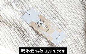 服装吊牌标签样机模板 Clothes label tag blank white mockup #2392962