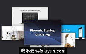 现代时尚艺术设计工作室社交媒体电子商务web UI工具包Phoenix Startup UI Kit Pro