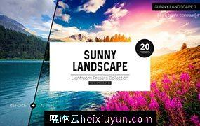 风景预设,风景照片滤镜预设Sunny Landscape  #865660