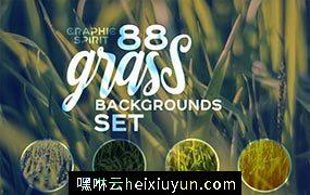 有趣的草背景纹理素材 Cute Large Grass Backgrounds Natural #669918