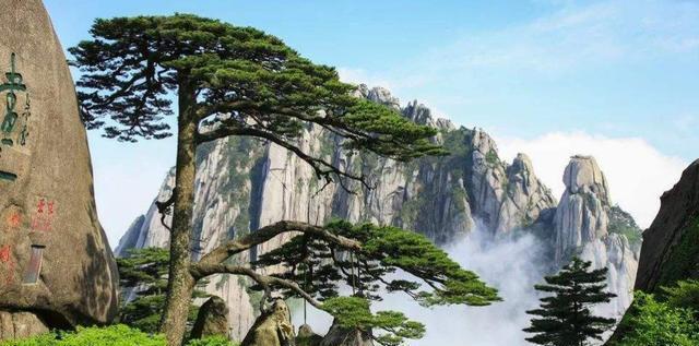 中国年收入高的3座名山,排在第1的居然是张家界,黄山远远比不上