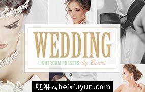 时尚婚纱摄影滤镜人像预设Wedding Lightroom  #101567