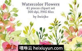 41+手绘水彩花卉PNG免扣素材合辑 Watercolor Garden Flowers #636799
