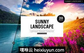 专业级日落阳光晚霞户外摄影LR调色素材 Sunny Landscape Lightroom Presets