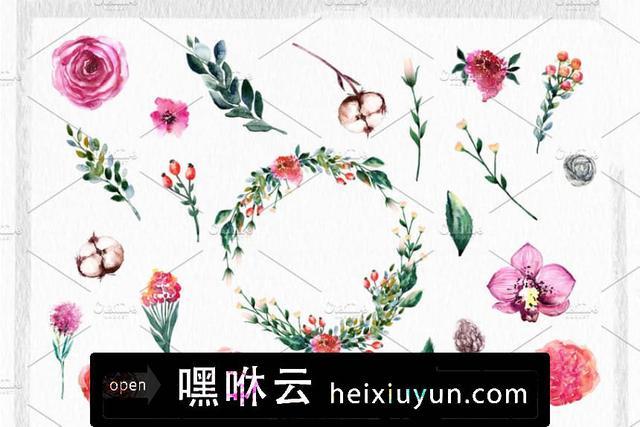 嘿咻云-水彩西番莲剪贴画 Watercolor Passion Flowers #840187