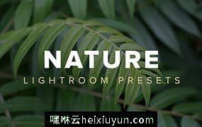 风景滤镜lightroom预设nature-lightroom #342539