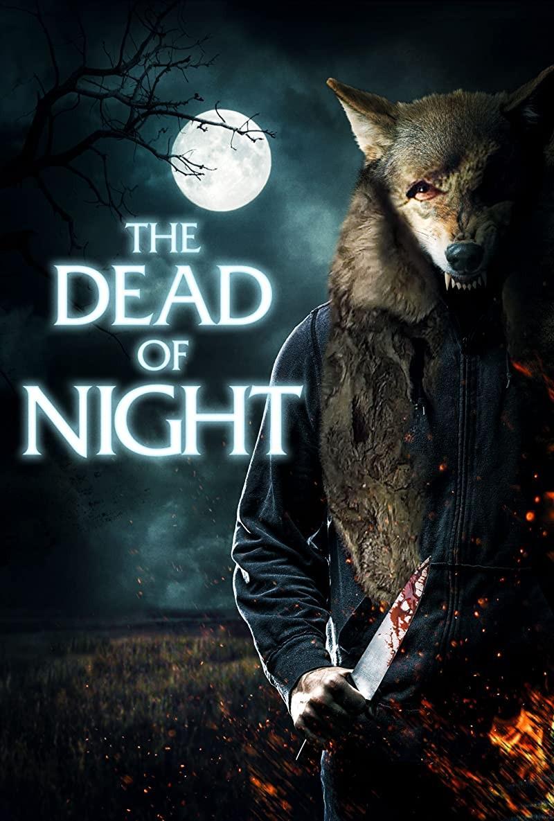 赴死之夜海报