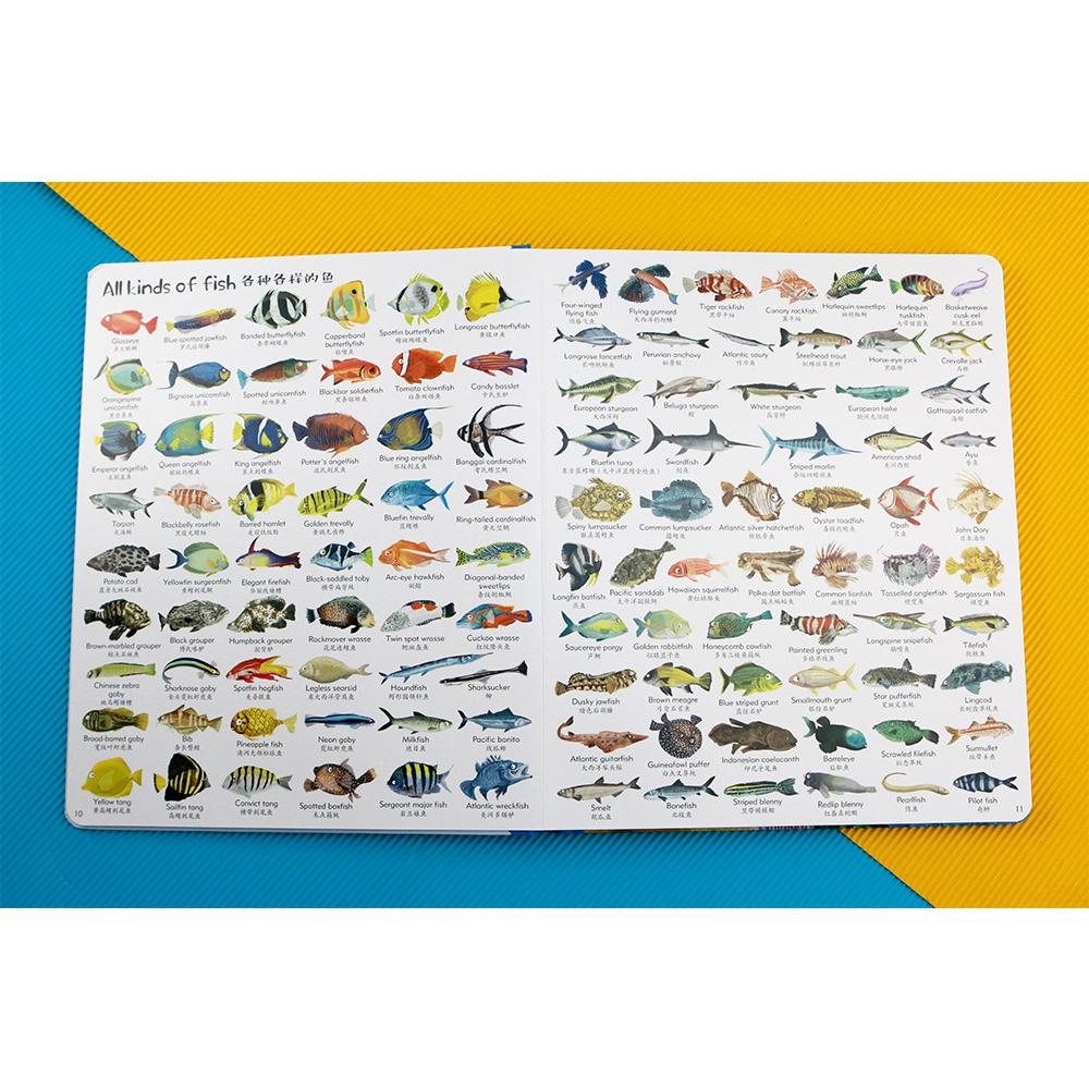 《1000种海洋之物》| 一本图鉴的多种使用法-书啦圈