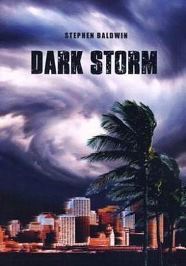 黑色风暴海报