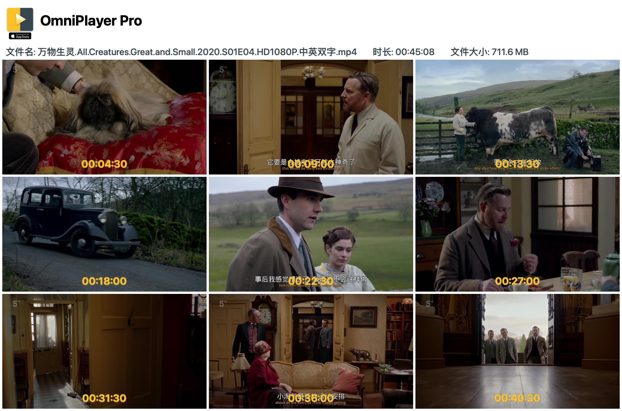 英剧万物既伟大又渺小 1080P 高清分享的图片-高老四博客