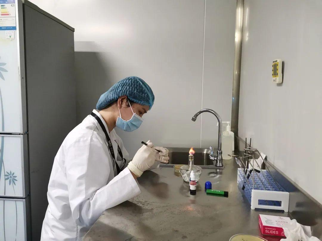 中检联在深圳市微生物检定工技能竞赛荣获佳绩!(图6)