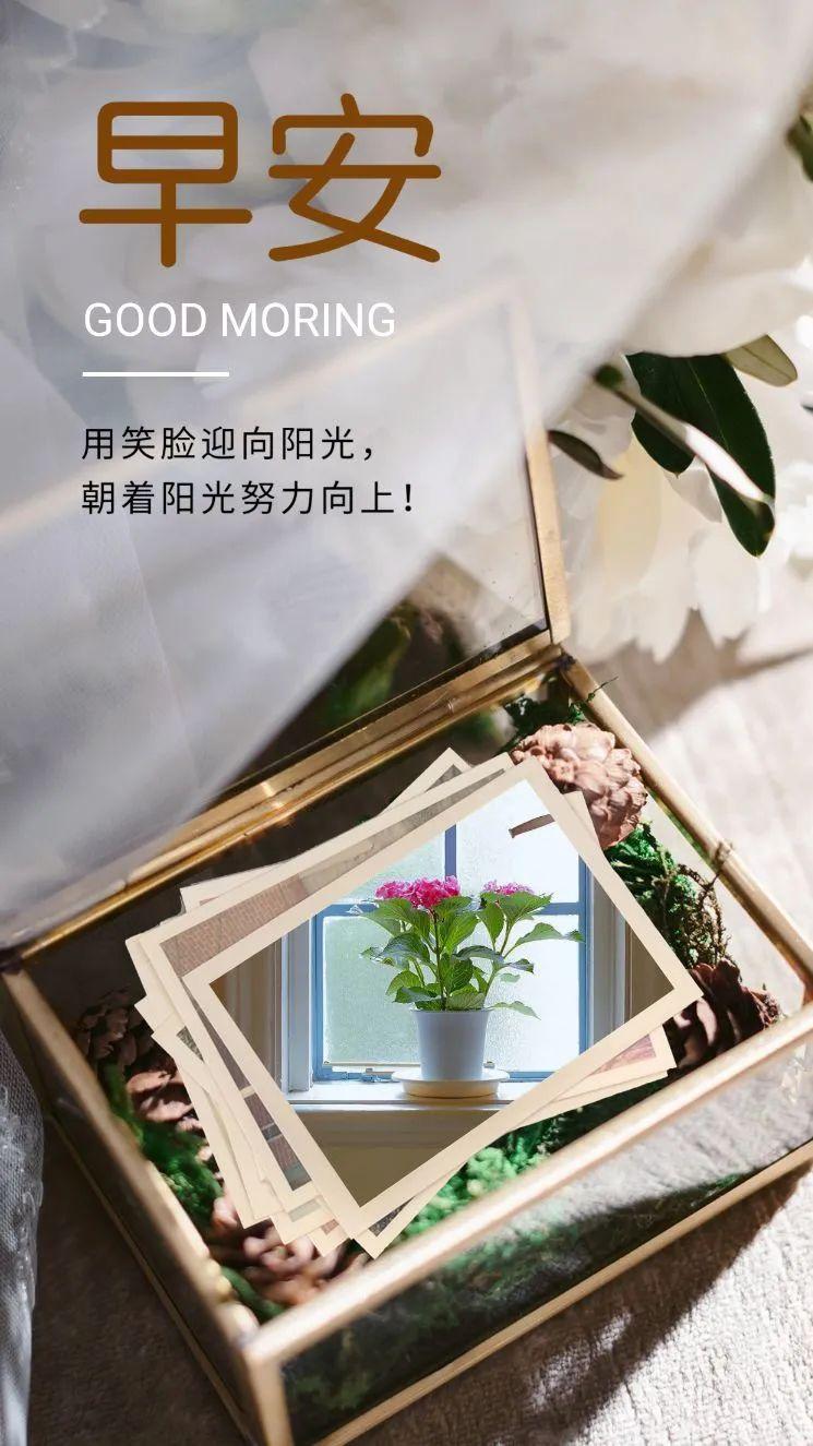 朋友圈早安激励语图片,适合发朋友圈的早上好句子说说