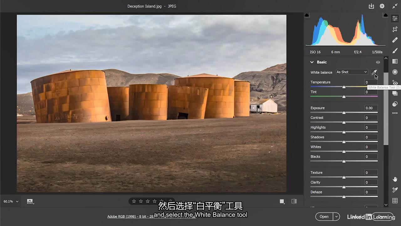 PS全面基础教程 Lynda Photoshop 2021 One-on-One Fundamentals