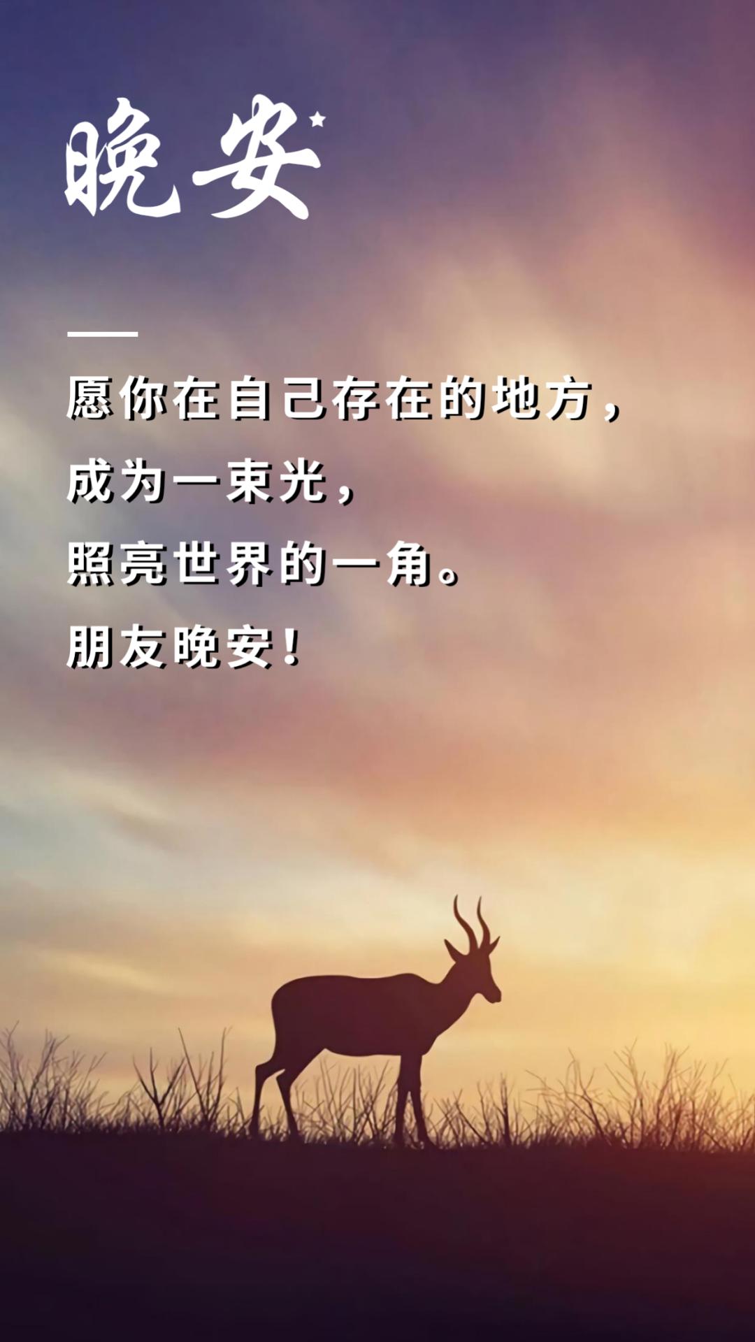 晚安,很漂亮的句子文字,更漂亮的图片