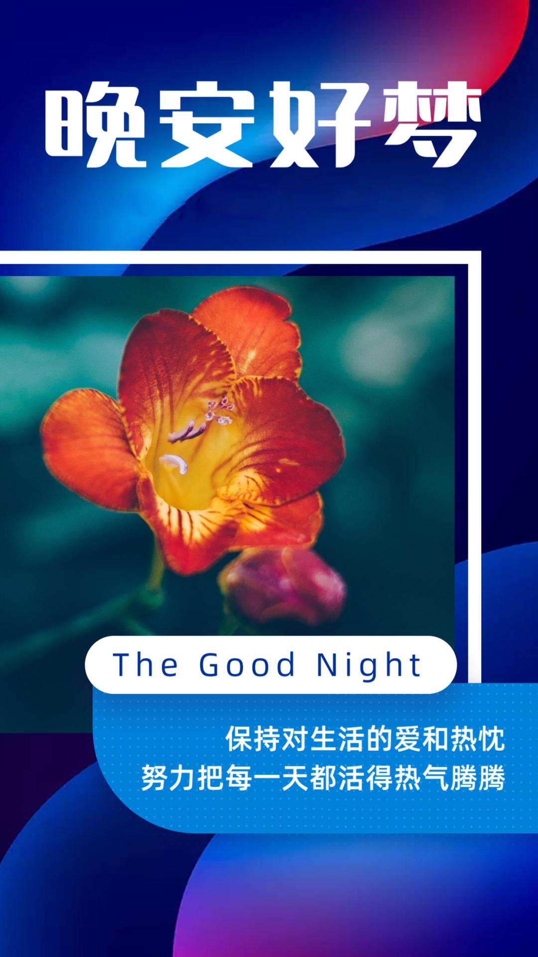 很戳心的晚安心语语录,总有一句与你心有灵犀!
