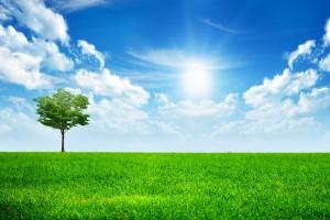 周末早晨问候语正能量配图:不辜负时光,不蹉跎岁月