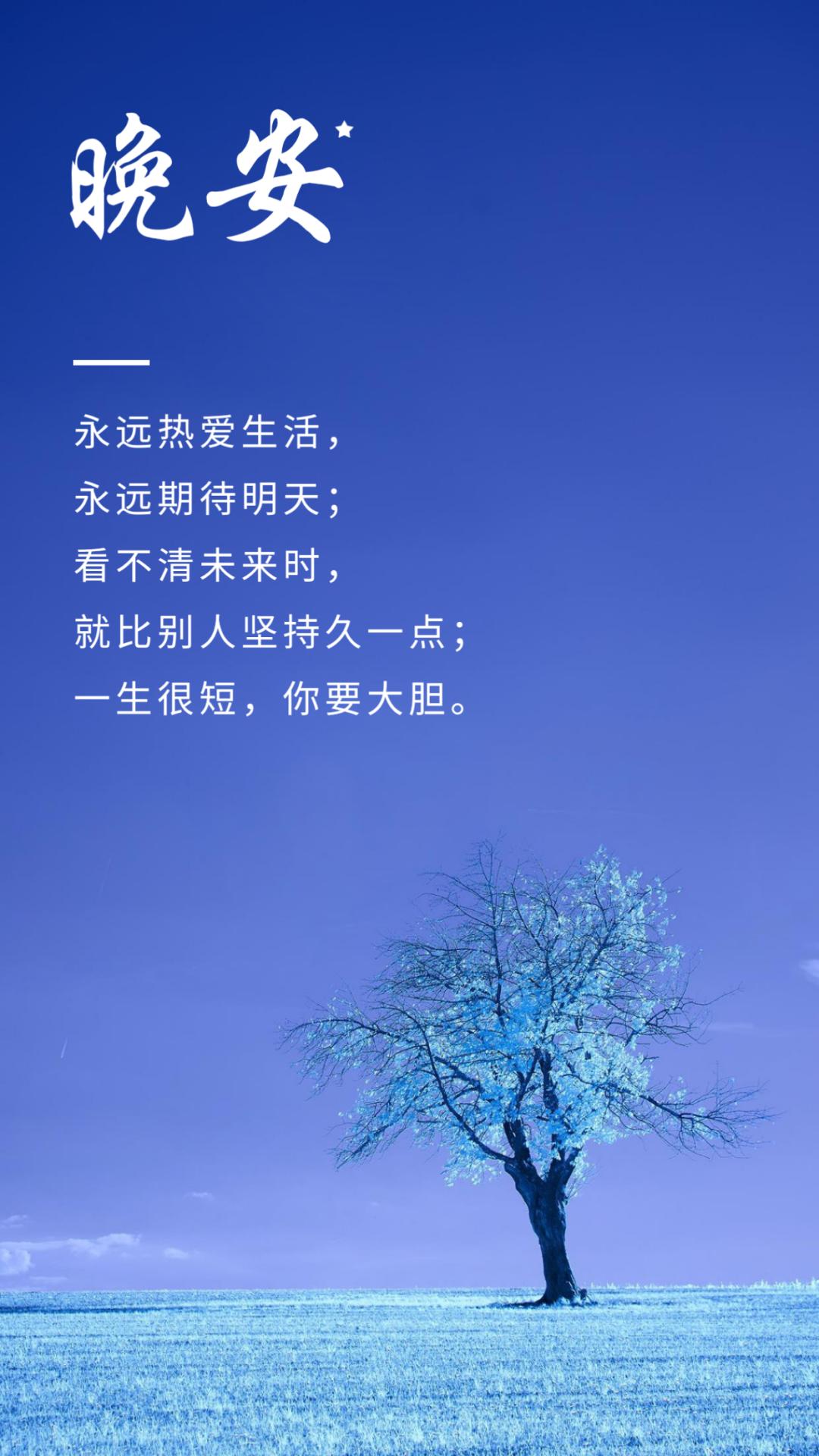 早安清新短句子:温柔半两,从容一生