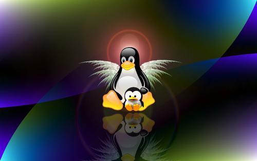 Linux上如何锁定虚拟控制台会话
