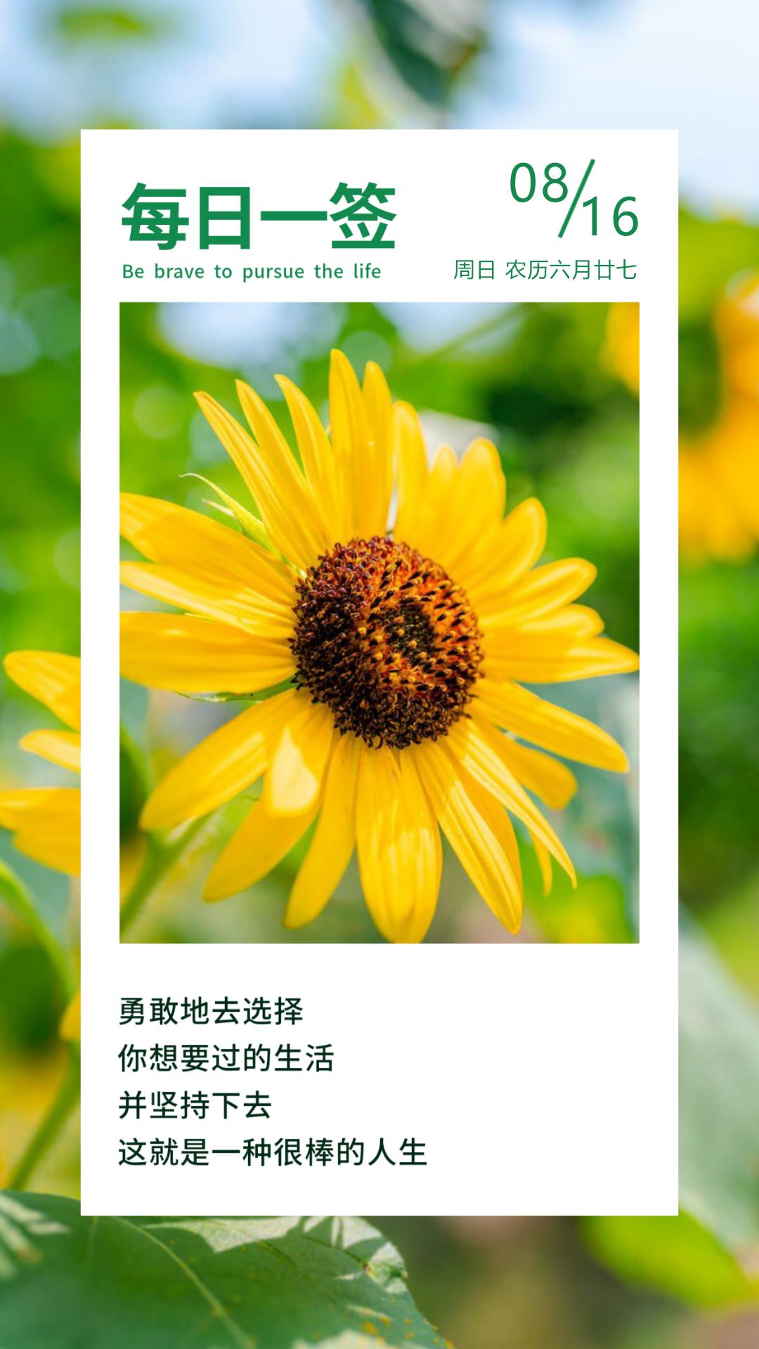 微信分享最励志奋斗早安语录图片:心有志气,生命才坚壮